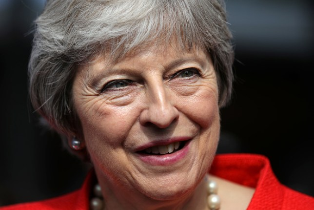 13e42d20493 (Picture: Christopher Furlong/WPA Pool/Getty Images). Prime minister Theresa  May has cruelly been nicknamed the ' ...