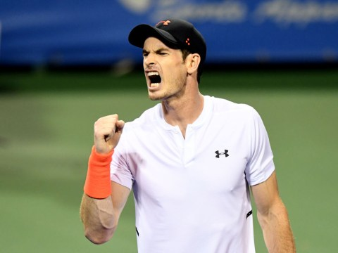 Andy Murray soars up the ATP rankings after Washington heroics