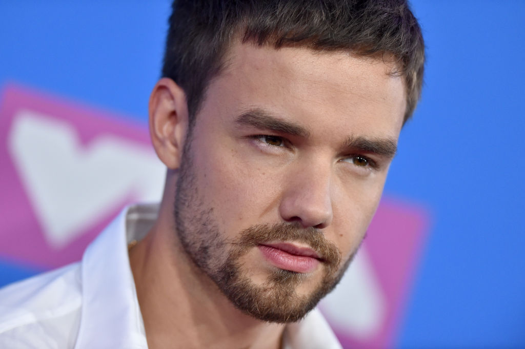 Liam Payne talks about how much he likes sex and it's the definition of TMI