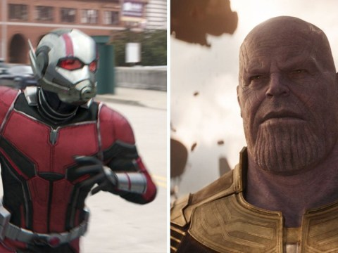 Does this Ant-Man And The Wasp easter egg give a hint at the events of Avengers 4?