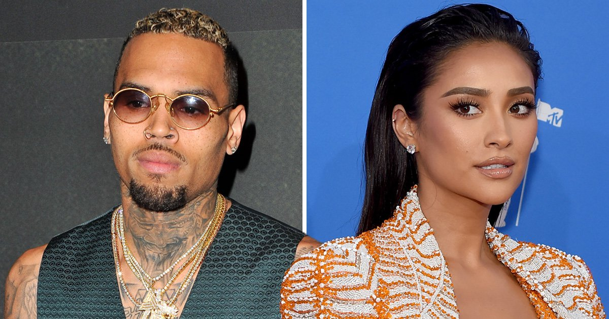 Chris Brown slides into Shay Mitchell's DMs – but does he have a Pretty Little chance?