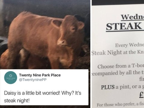 Steak night joke about Daisy the cow's impending death didn't go down too well