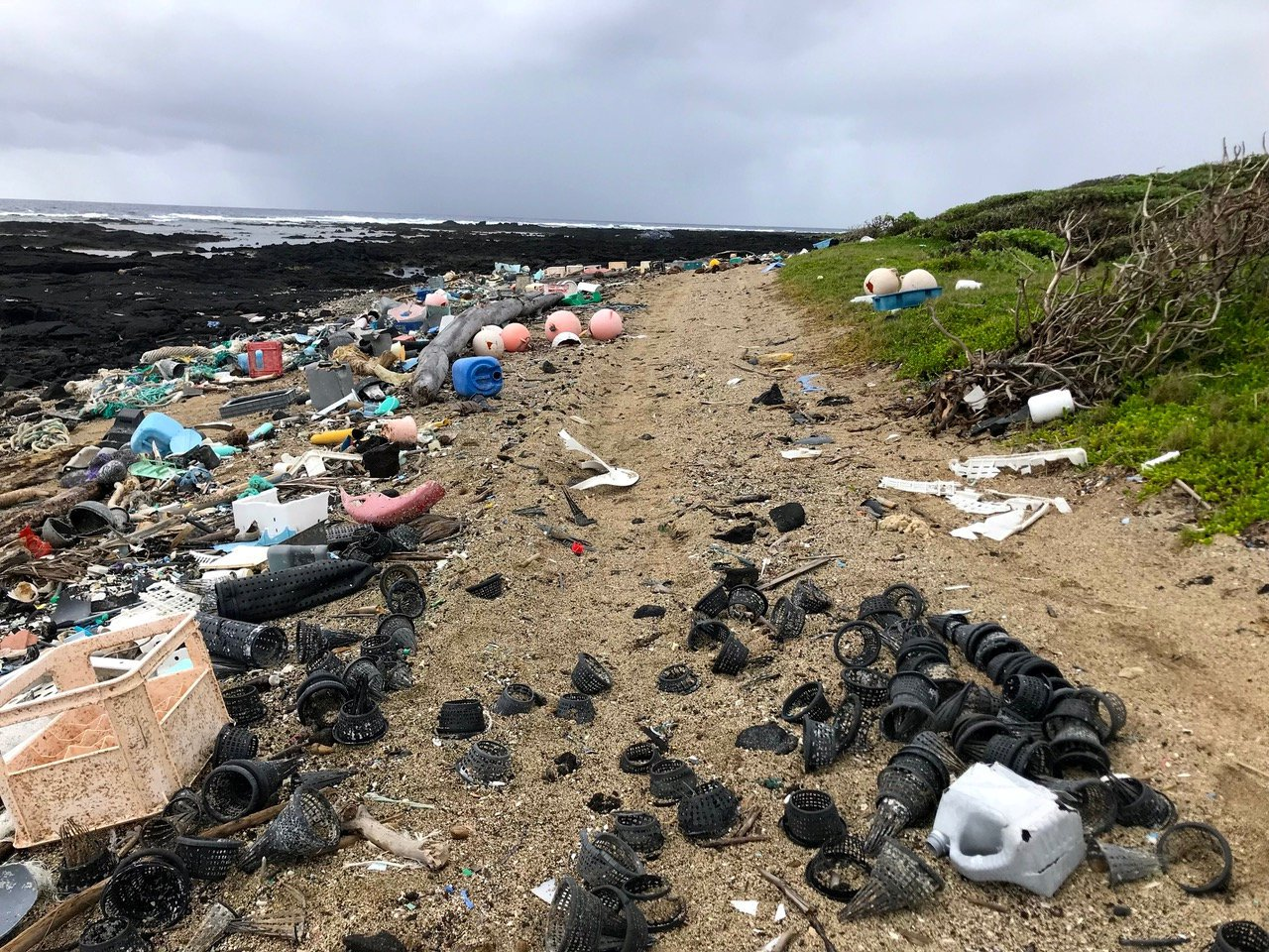 EMBARGOED FOR RELEASE: 1-AUG-2018 7PM BST/14:00 ET This is plastic pollution at Kamilo Point, Big Island, Hawaii on Feb. 14, 2018. Plastic food packaging contains hundreds of different toxic chemicals including dangerous cancer-causing heavy metals and gender bending substances , a new study warned. See SWNS story NNPLASTICS; Plastic used in trays, wrappings around fruit and vegetables and cheeses and other food packets had 4,283 individual chemicals of which 148 highly hazardous substances. Among these 148 hazardous chemicals were cadmium, chromium, lead and mercury, which are considered to be highly dangerous as they are cancer-causing carcinogens and can cause permanent changes to the genetic make-up of cells. These metals can also have adverse effects on fertility and sexual function and are ranked as the most hazardous to human health or the environment, based on EU toxicity classifications.