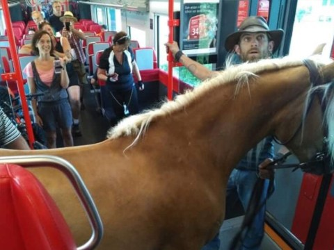 Heard of snakes on a plane? Get ready for horse on a train