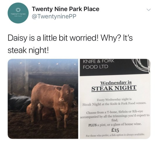 """A restaurant has apologised for using a picture of a """"worried"""" cow called Daisy to promote their steak night. Fashionable eaterie Twenty Nine Park Place caused a storm when it took to Twitter to drum up interest for their upcoming steak night. Alongside a picture of a cow and the steak menu, the restaurant tweeted: """"Daisy is a little bit worried! Why? It's steak night!"""" WALES NEWS SERVICE"""