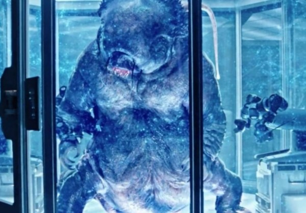 Star Trek Discovery going to court for plagerising a video game storyline Picture: The tardigrade Credit: CBS