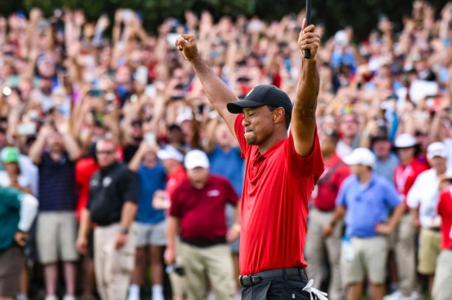 49e9157e9c509 Tiger Woods celebrates his two stroke victory on the 18th hole green as  fans watch behind him during the final round of the Tour Championship  (Picture  PGA ...