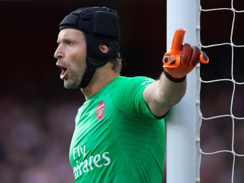 Petr Cech criticises Arsene Wenger and compares Arsenal to Tiger Woods