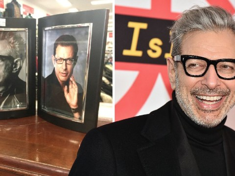 Charity shop takes its Jeff Goldblum appreciation to new levels with his face in every photo frame