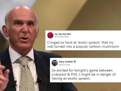 Brexiteers will have an 'exotic spresm' when we leave the EU, says Vince Cable