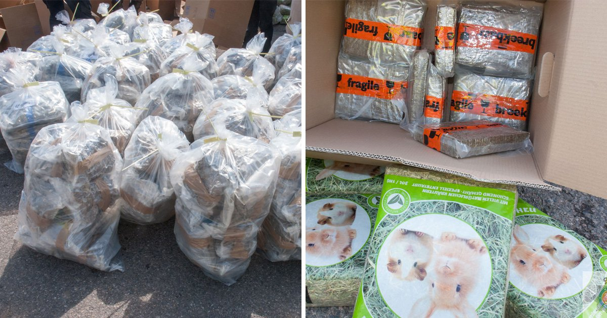 Drug smugglers tried to hide £10,000,000 worth of cannabis under rabbit hay