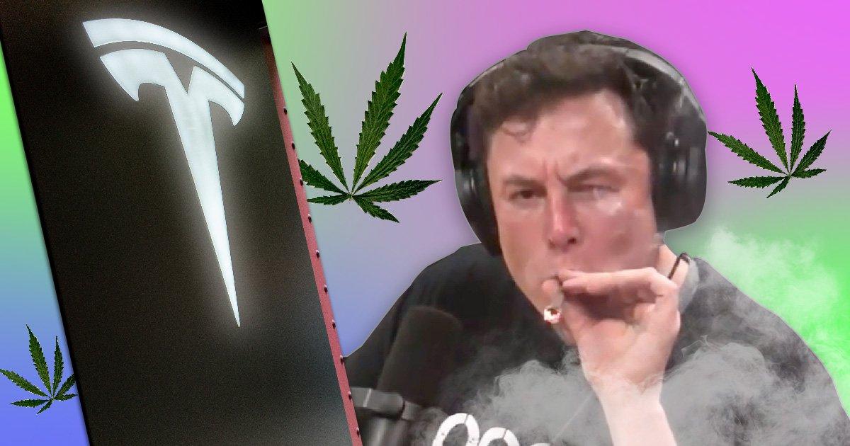 Nasa killjoy says we'll never again see Elon Musk smoking weed on the internet