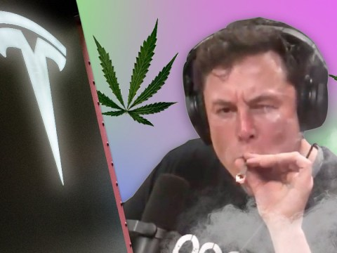 Nasa killjoy says we'll never again see Elon Musk smoking weed on the internet
