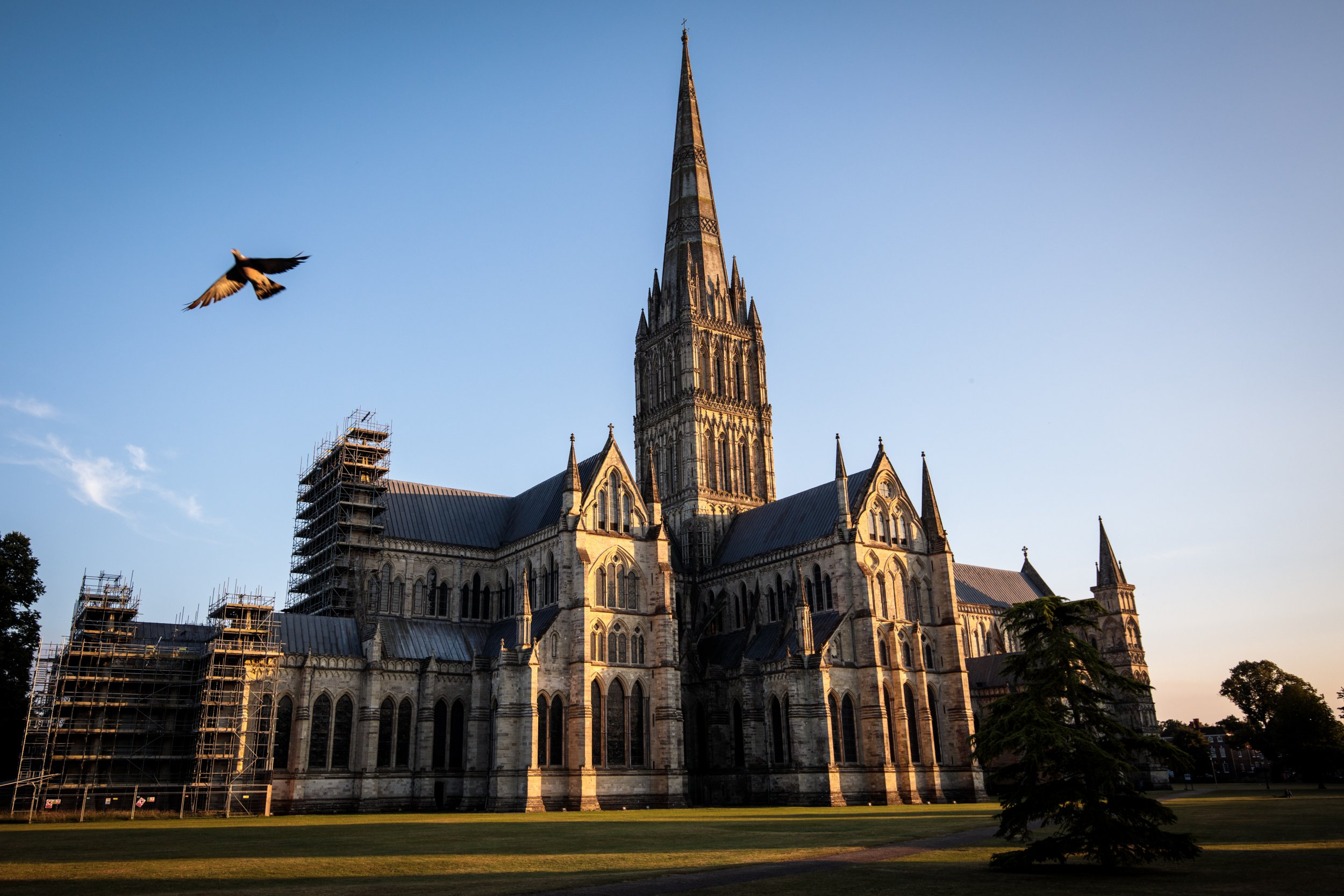 SALISBURY, ENGLAND - JULY 04: A pigeon flies past Salisbury Cathedral as the sun sets on July 4, 2018 in Salisbury, England. A man and woman in their 40s are in a critical condition after being found unconscious at an address in Muggleton Road, Amesbury. The town is around 10 miles from Salisbury where former Russian spy Sergei Skripal and his daughter Yulia were poisoned in a suspected nerve agent attack. (Photo by Jack Taylor/Getty Images)