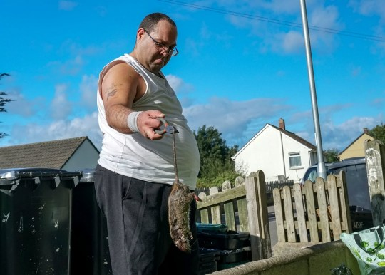 Roger Marlow with one of the rats he found under his bath. See SWNS story SWRATS; A furious dad found 'stinking' dead rats under his bath - and dumped them on a housing officer's desk. Roger Marlow, 37, lives in a council house with two young children, Carmen, nine, and Matthew, four. He noticed a bad smell in his bathroom three days ago but thought nothing of it until it got significantly worse on Wednesday, September 12. He went to investigate and found two rats, around the length of a size 12 shoe, rotting beneath the bath in his home in Barnstaple, Devon.
