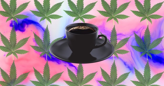Would you make cannabis coffee part of your morning routine? (Picture: Metro.co.uk)