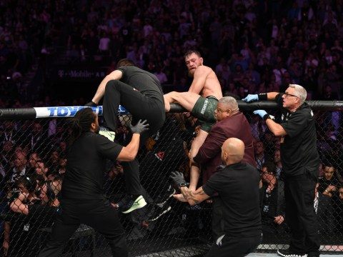 Conor McGregor punched after fight during brawl sparked by Khabib Nurmagomedov at UFC 229