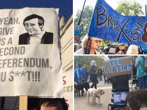 People's Vote protest signs: The most creative and punny placards on display