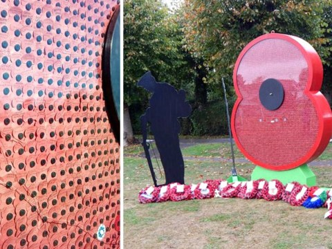 Vandals smash glass poppy memorial in 'senseless act of violence'
