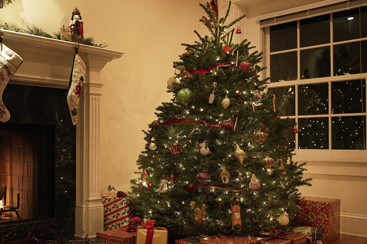 When should you put up your Christmas tree?