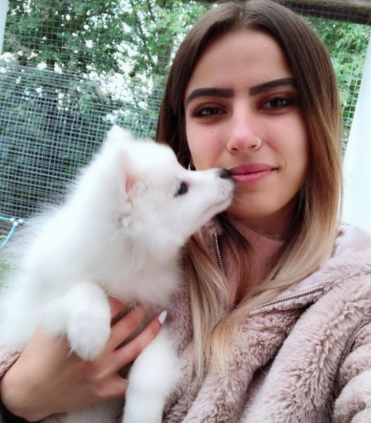 A puppy at the centre of an immigration row could be destroyed unless his owner raises ?3,000 in the next three months. Fluffy, a white Pomeranian from Bulgaria, is at the centre of an identity wrangle with Oldham Council in Greater Manchester. Caption: Aylin Mehmed on a recent visit to see her pet Pomeranian, Fluffy, who has been quarantined amidst an immigration row