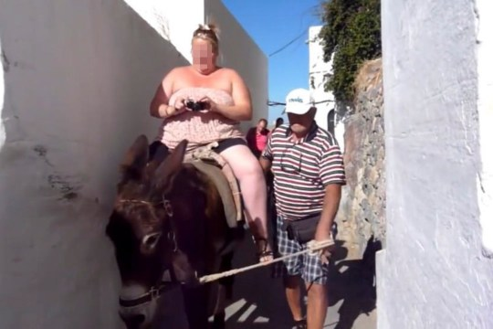 PICS FROM CATERS NEWS - (PICTURED Donkeys being ridden in Santorini before the governement placed the ban)-The Greek government has BANNED fat tourists riding on donkeys after campaigners shed light on the animals plight.After images of donkeys climbing the narrow steps of the Greek island of Santorini laden down by obese holidaymakers hit the headlines worldwide, lawmakers in Greece have pledged to change the law.SEE CATERS COPY