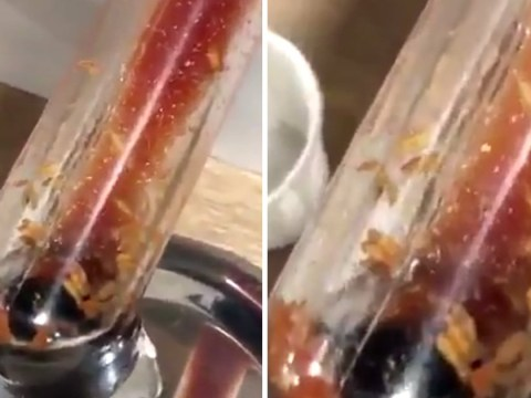 Maggots wriggling in McDonald's ketchup dispenser may put you off for life