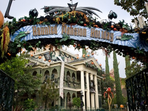 Disney's Haunted Mansion 'is full of real human ashes' left by grieving families