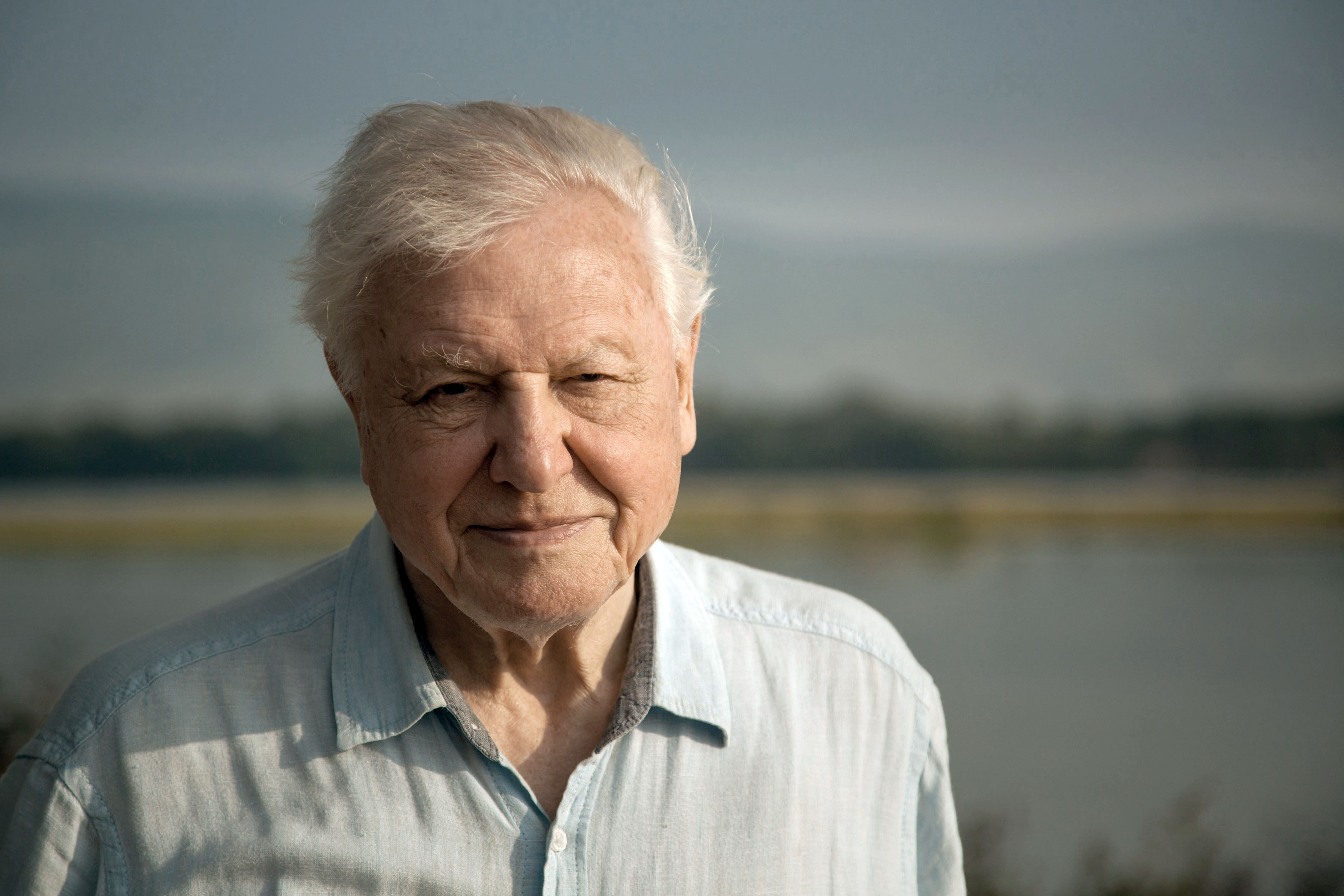 David Attenborough, the UN and a Facebook 'bot are tackling climate change