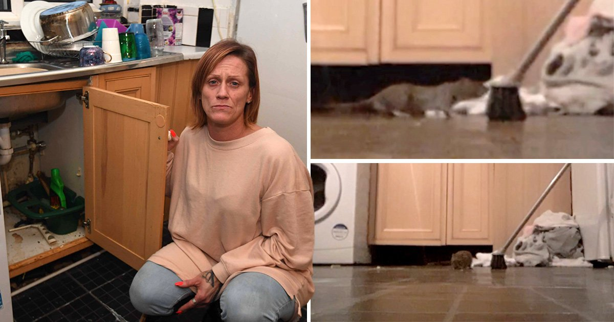 Mum says rat-infested council flat nearly killed her three times