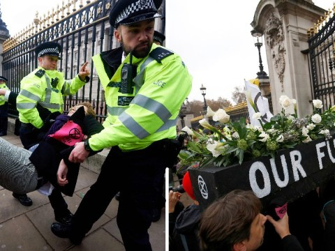 Protesters dragged away after gluing themselves to Buckingham Palace gates