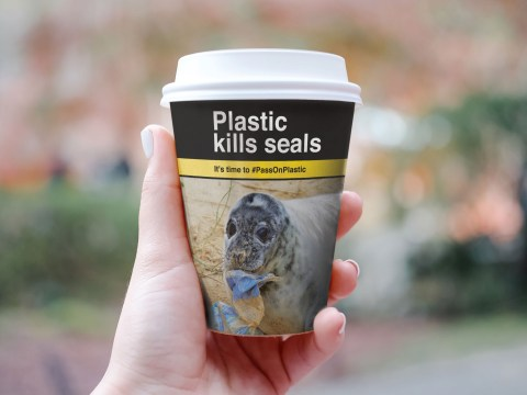 Coffee cups could get cigarette-style plastic warnings