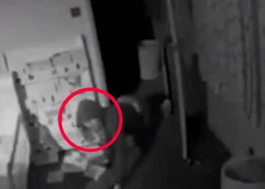 "Shocking footage of the moment a burglar slowly crawls into the bedroom of a two-year-old boy while the family was away has been caught on CCTV. Oliver Wallace, an HR consultant from Westhall Road in Warlingham, lives with his wife Sally and son Sam, 2. He said that during the raid the burglars stole jewellery that belonged to his wife's mother, who died in a car crash in 2011. Mr Wallace watched the shocking offence unfold live on his phone while he was in a pub in Stockwell on Wednesday (November 7). He was with his brother at the bar when his phoned bleeped at around 7.45pm. Mr Wallace said: ""I was on my way home, and I was coming through central London and contacted my brother to see if he wanted to meet for a drink. ""I met him for a drink in a pub in Stockwell, as we are getting the drinks my phone bleeps. We have this camera in my baby Sam's bedroom. ""It said 'motion in the room', but normally I sort of ignore it, as we are always in and it's only us. To my horror, someone was in the house. Within a minute I had phoned 999, and told them a burglary was in progress and they took the details."" Picture: BPM Media METROGRAB TAKEN FROM SITE BPM DID NOT FILE THIS PICTURE I DID CONTACT THEM HOWEVER NO RESPONSE ALL DAY USED ONE GRAB RIPPED FROM SUN: https://www.thesun.co.uk/news/7708549/dad-sees-burglar-crawling-around-two-year-old-sons-bedroom-security-app/"