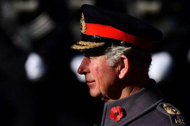 ea93d163bbba7 BRITAIN-MILITARY-WAR-HISTORY-ROYALS