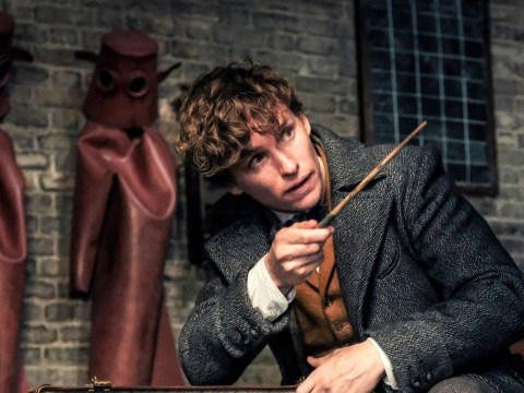 Filming for Fantastic Beasts 3 delayed because new movie is 'going to be gigantic'