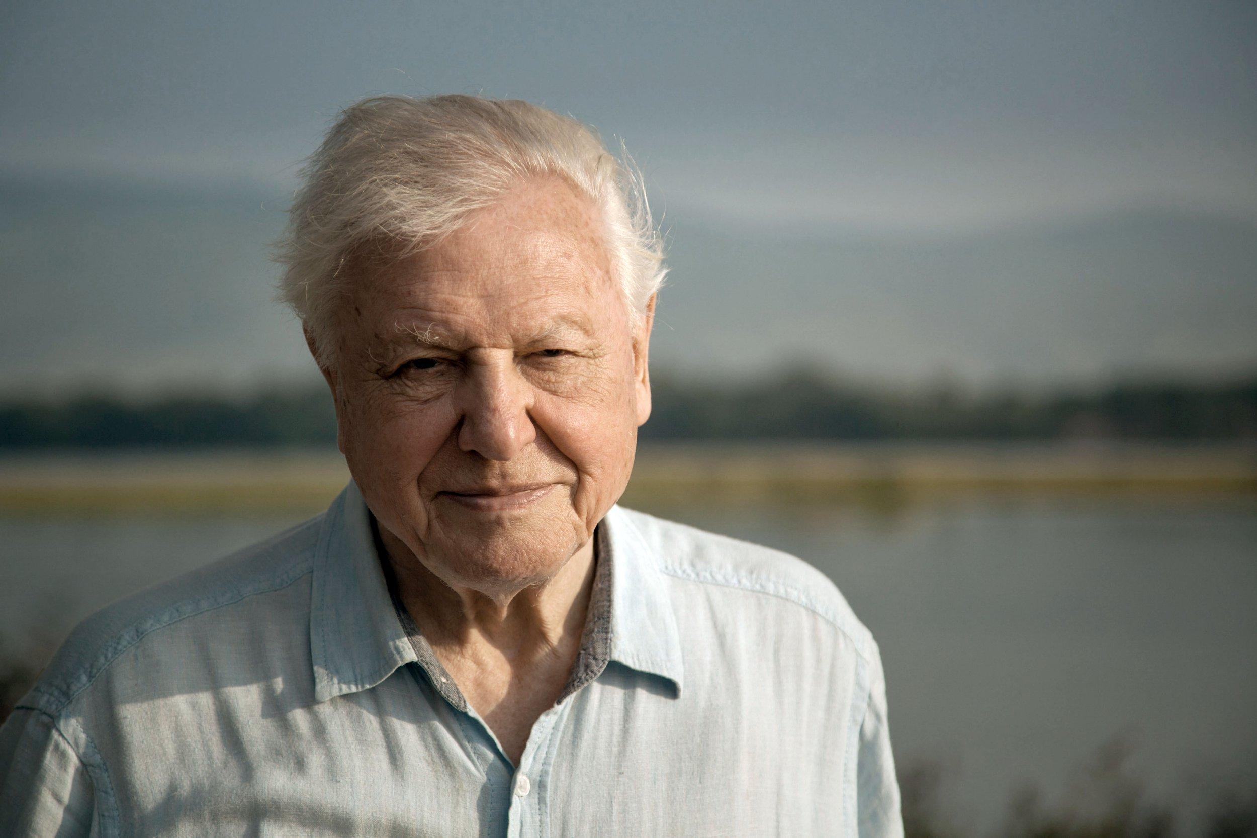 Dynasties viewers applaud David Attenborough as he makes rare plea in show finale