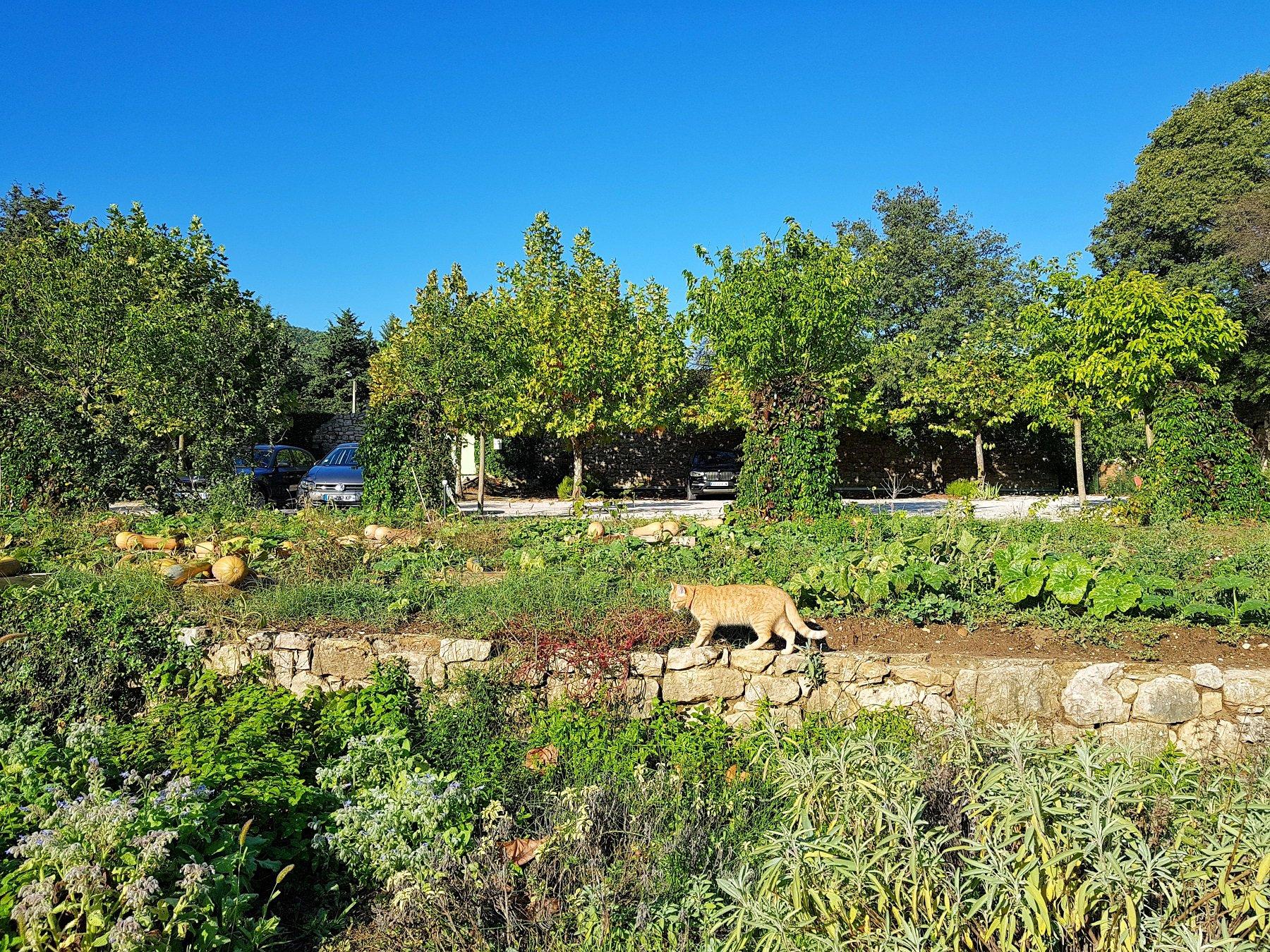 Provence Credit: Qin Xie