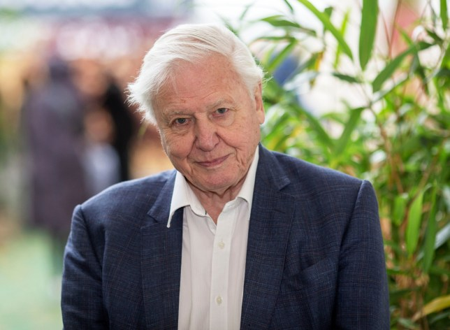 Mandatory Credit: Photo by DAVID HARTLEY/REX/Shutterstock (9916173f) Sir David Attenborough. The Times and Sunday Times Cheltenham Literature Festival, UK - 06 Oct 2018