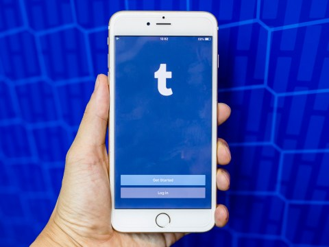 Tumblr removed from Apple App Store after the discovery of vile child pornography