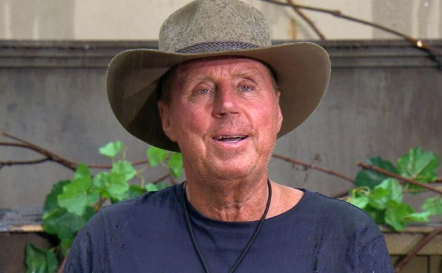 STRICT EMBARGO - NOT TO BE USED BEFORE 22:30 GMT, 22 NOV 2018 - EDITORIAL USE ONLY Mandatory Credit: Photo by ITV/REX (9989883t) Bushtucker Trial: Unleash The Beasts - Harry Redknapp 'I'm a Celebrity... Get Me Out of Here!' TV Show, Series 18, Australia - 22 Nov 2018