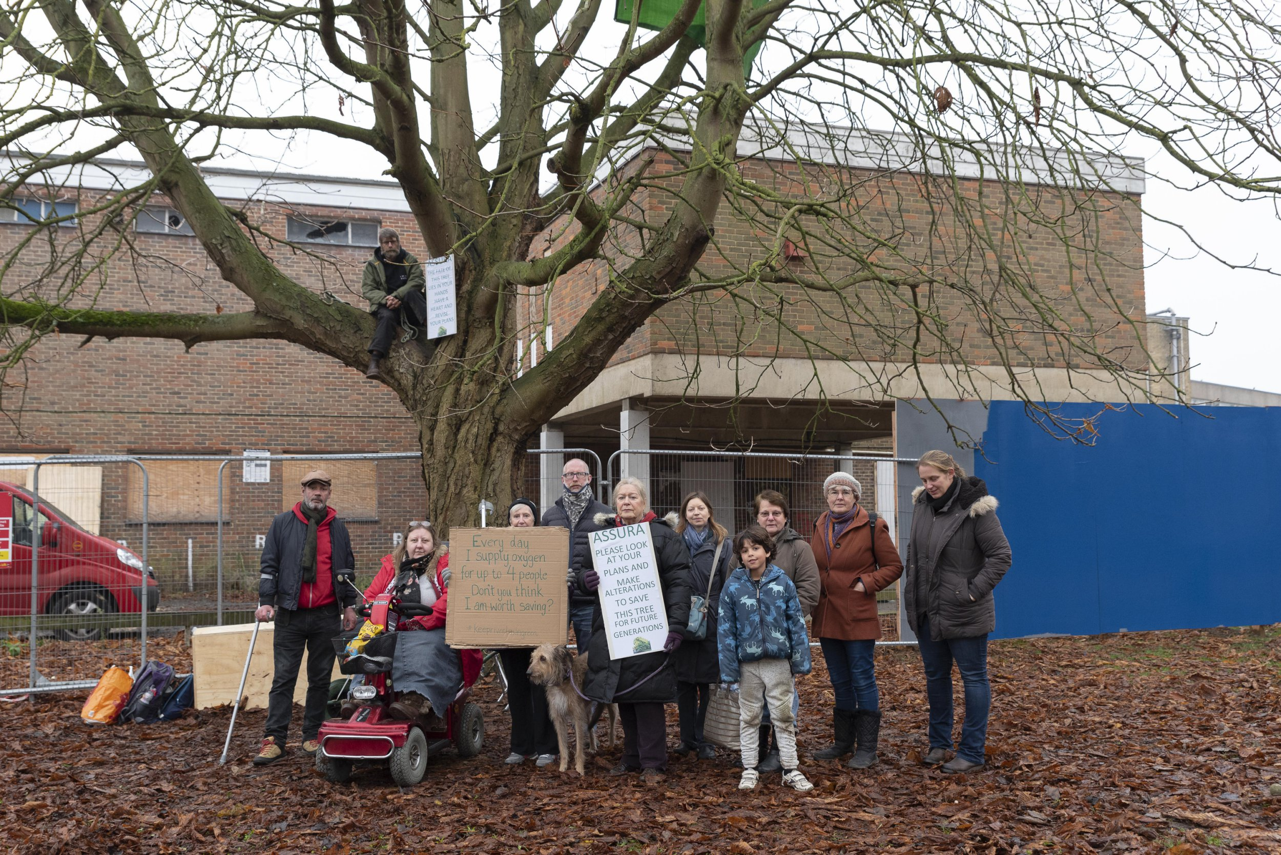 - Picture of Mark Hood, 50, who is protesting over plans to fell a 90 year old tree in Tonbridge, Kent. Surrounded by fellow protestors TRIANGLE NEWS 0203 176 5581 // contact@trianglenews.co.uk PLANS to fell a 90-year-old tree have sparked an extraordinary protest that has seen members of a campaign group sitting in it around the clock to prevent developers chopping it down. A rota of ten people have sat in the horse chestnut for 24 hours a day since arborists initially came to hack it to pieces with chainsaws ten days ago. It has been earmarked for destruction as part of the building of a new three-storey medical centre in Tonbridge, Kent.