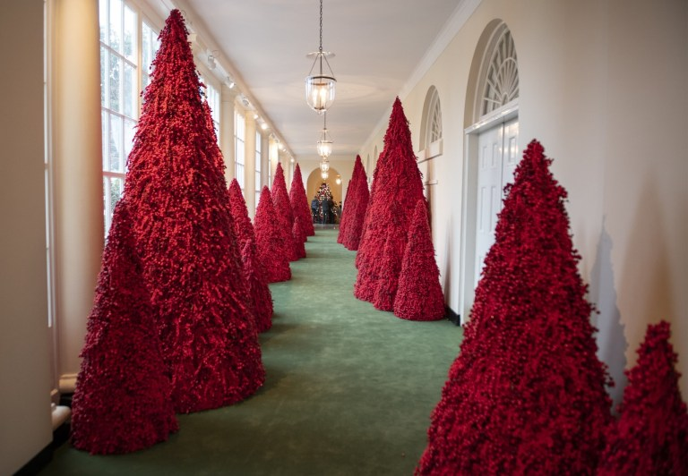 Melania Trump collects remaining White Home Christmas tree earlier than she and Donald are kicked out