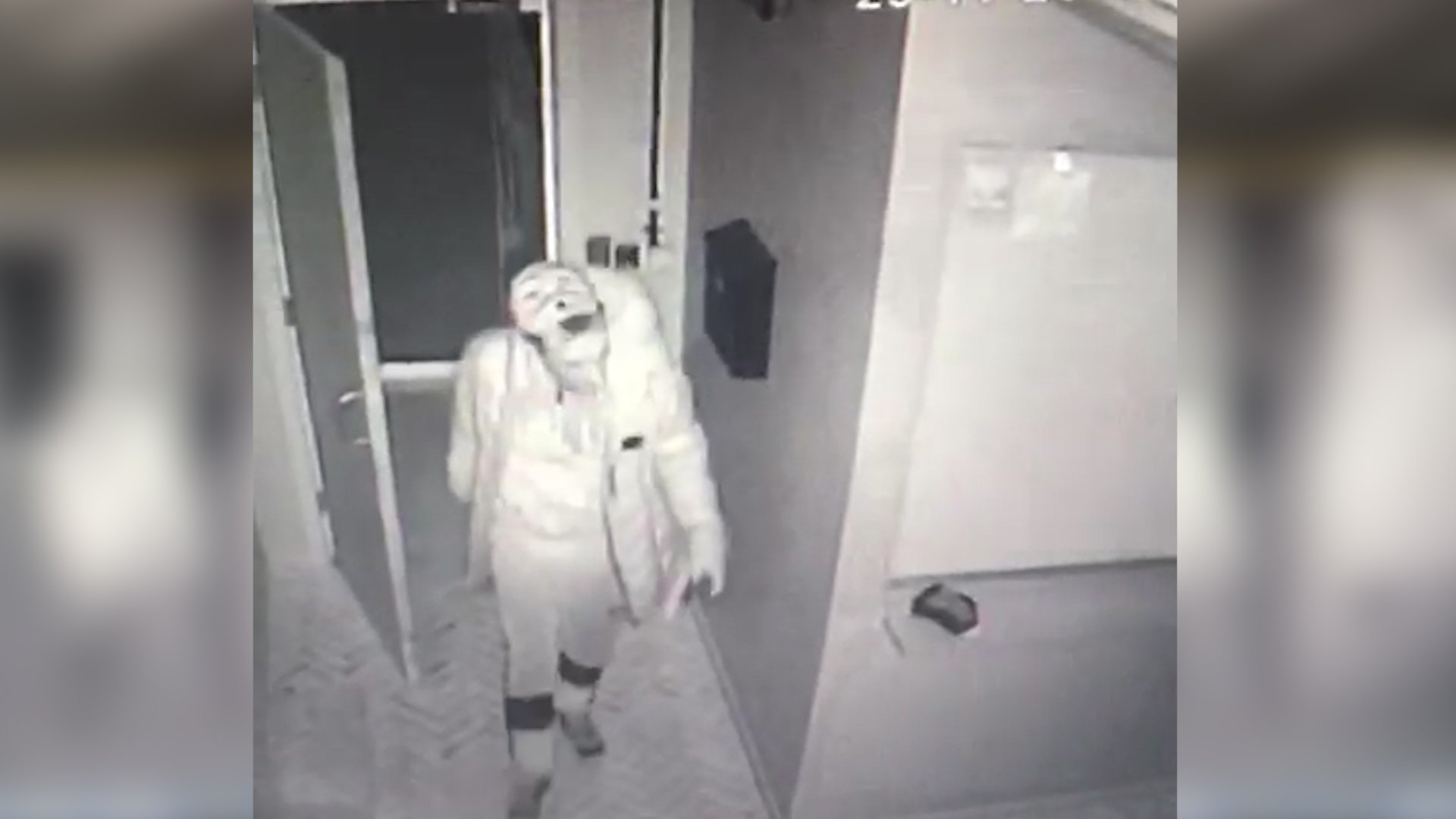 Lucardo Escape Room Manchester where bungling burglars broke in in the early hours of Thursday November 29th 2018. Grab from CCTV footage
