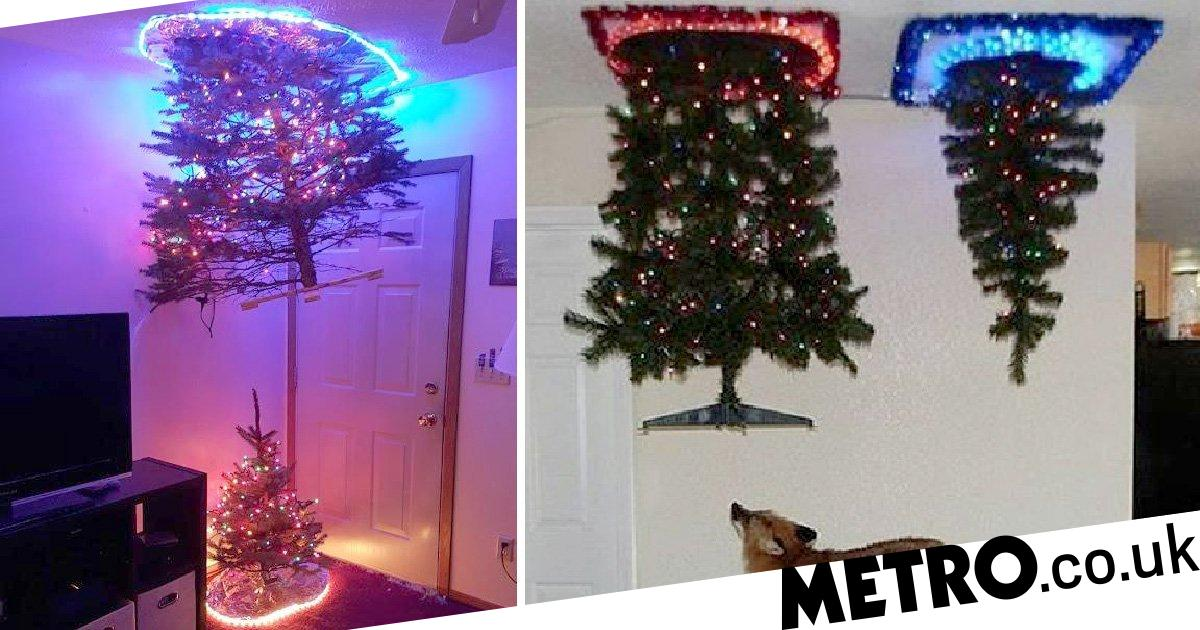 Portal Christmas Trees Are The Latest Festive Instagram Trend