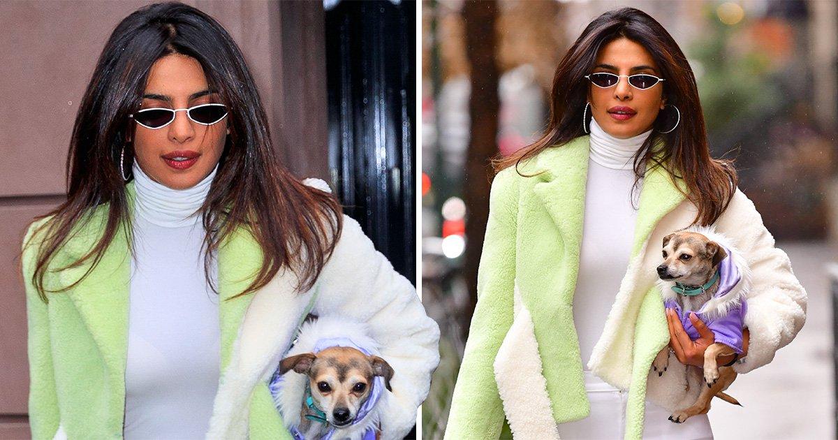 Priyanka Chopra reunites with her little dog in New York following lavish wedding to Nick Jonas