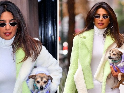 Priyanka Chopra reunites with her little dog in New York following lavish wedding to Nick Jonas
