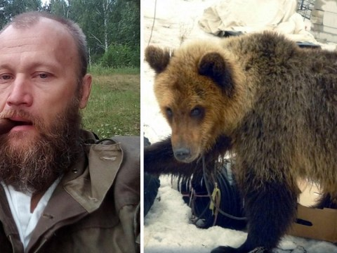 Russian man killed and eaten by bear he rescued as a cub