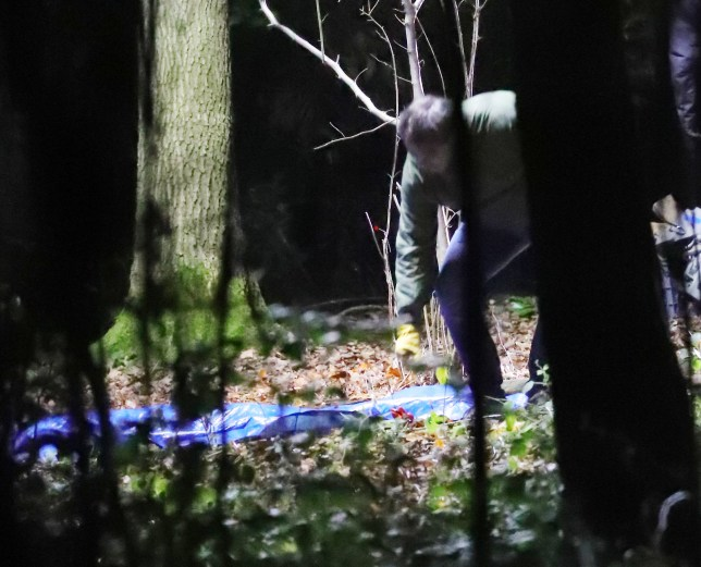 EXC ALL ROUND HUGE EASTENDERS MURDER SCENE SPOILER The BBC have said their will be a brutal murder coming up shortly, here we have pictures taken in the middle of a forest in the middle of the night as dog walkers discover a body covered in a blue sheet and call the Police ..As they discovered the body the German Shepherd Dog was barking and the walkers screaming. The following day a scene of crime scene was set up with blue Police tent and Police tape securing the area. Eastenders are claiming it will be young person that gets murdered but nothing more is known NB images taken from public footpath almost 1/2 mile away in middle of night hence not so perfect images Pls call to arrange Online fee BYLINE TO READ: ISOIMAGES LTD