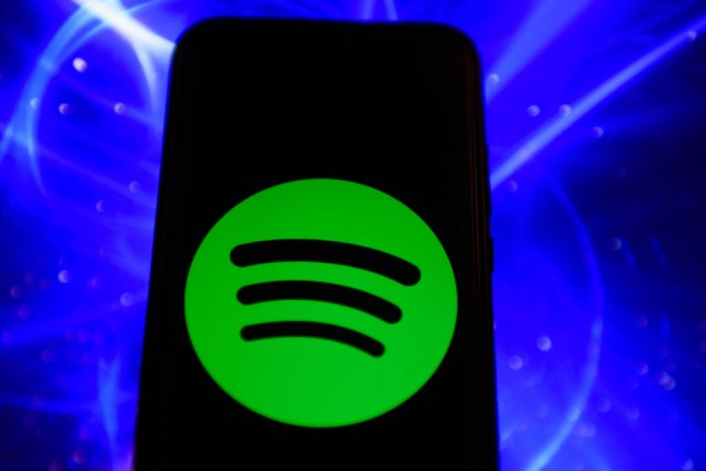The widget's untimely death has left some Spotify users sad and angry (Image: Getty)