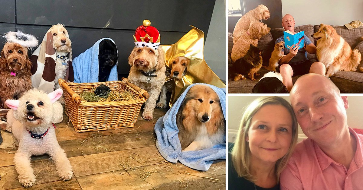 These dog groomers created a canine nativity scene and it's adorable